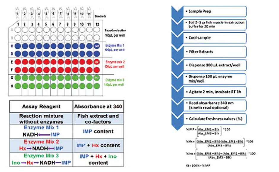 Figure 2: NovoCIB Precice Freshness assay principle and workflow. The assay works as three assays in one on up to 11 individual samples in a fixed 96-well microplate format with column 12 reserved for pre-filled standards (top left). Relative content of (%) IMP, (%) Hx, and (%) Ino is calculated following enzymatic conversion of nucleotides to NADH, and detection of NADH at 340 nm (lower left, and right).