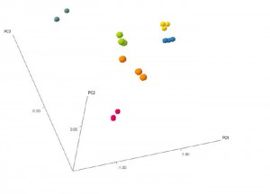 Figure 3: Data fused organic and inorganic markers results in a Scores plot of PC1 v PC2 v PC3, showing complete separation of all the groups of whisky samples.