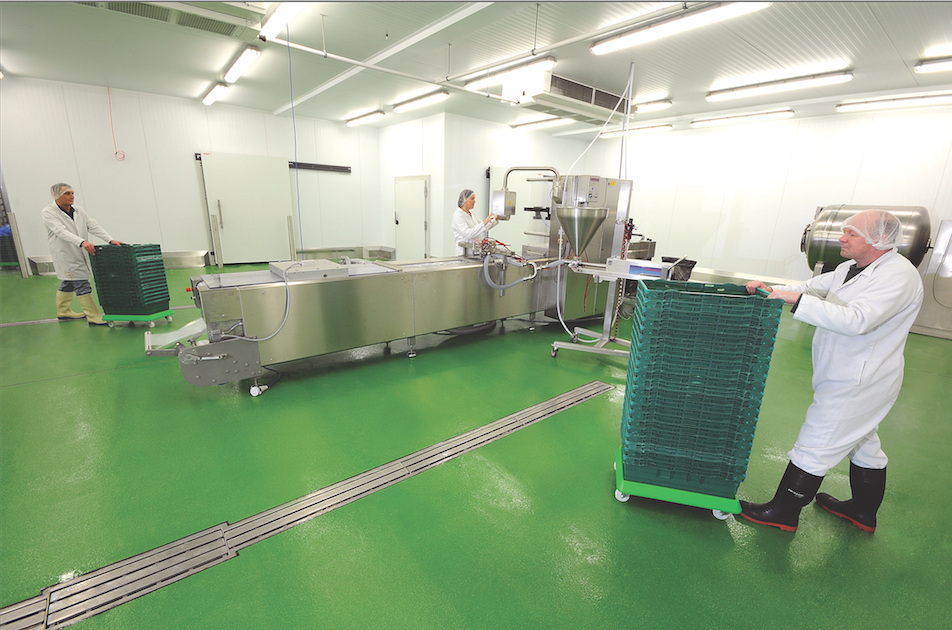 Choosing Hygienic Flooring For Your Food And Beverage Facility Food Quality Safety