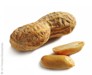 Peanut Industry in Favor of New USDA Peanut Rules