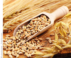 Fotolia_Wheat