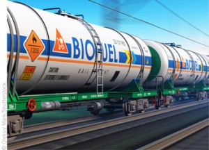 First Generation of Biofuels Undermine Food Security