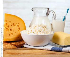 FQU0316_Cheese_Milk_295x241