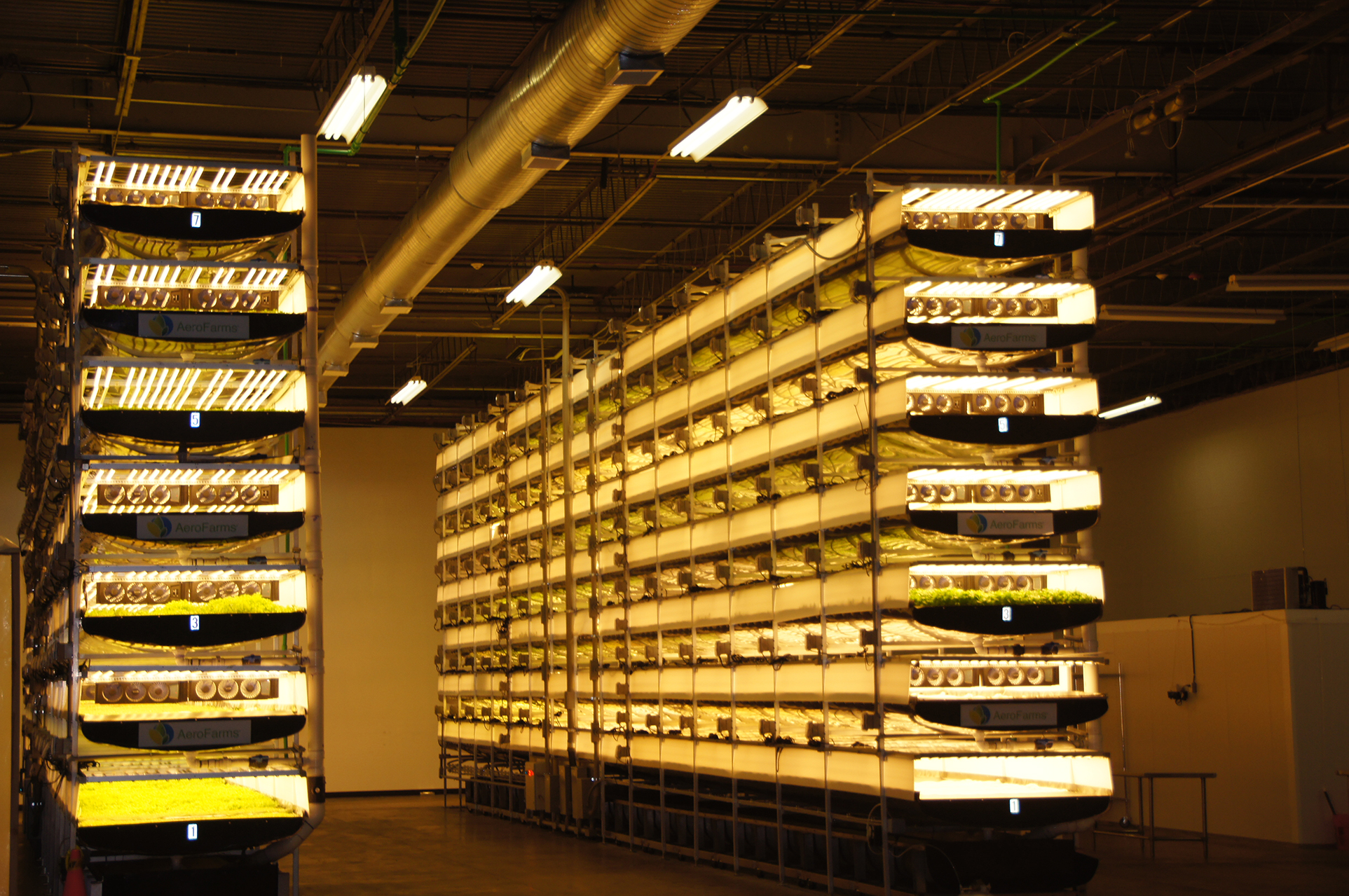 Can Vertical Farms Help Solve Safety Issues? - Food Quality & Safety