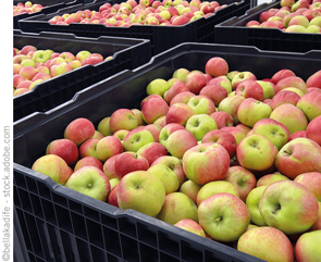 Integrating Product Traceability at the Warehouse - Food Quality
