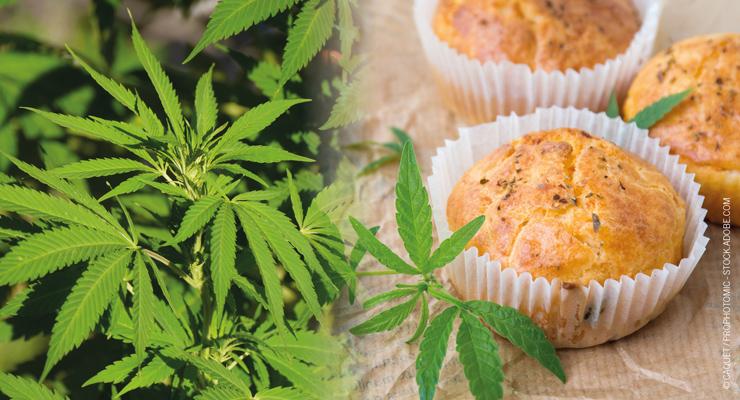 Marijuana as a Food Additive: Explosive Growth Likely