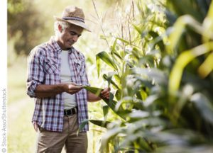 Harmonizing Produce Safety Standards Relieves Audit Fatigue