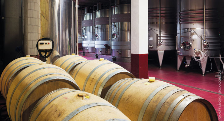 How to Extend the Shelf Life of Wine