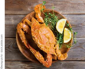 crab crustacean