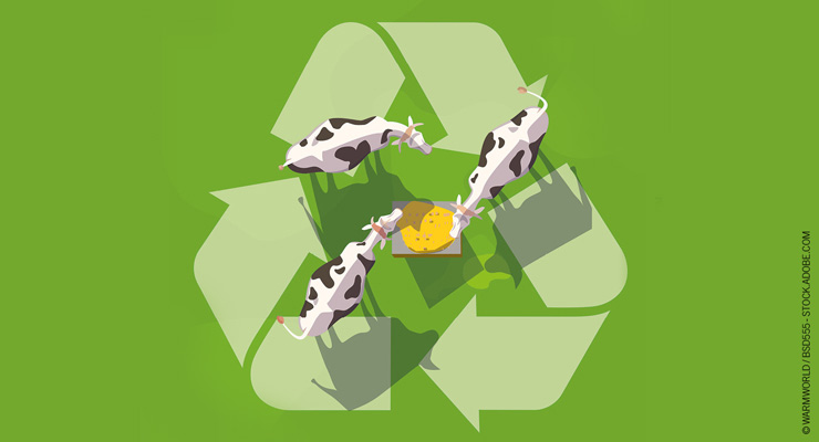 Turning Food Waste to Animal Feed: Your Guide to the Laws and Regulations