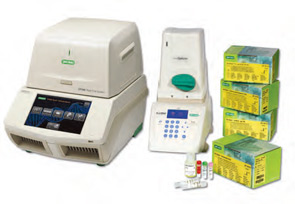 Real-Time PCR test kits for rapid, accurate pathogen detection