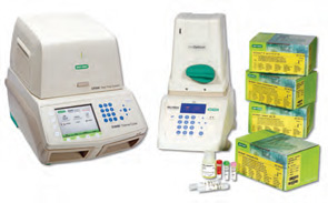 PCR High Throughout Protocols
