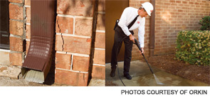 Regularly monitor for any cracks or holes in exterior walls and seal openings with weather-resistant sealant.